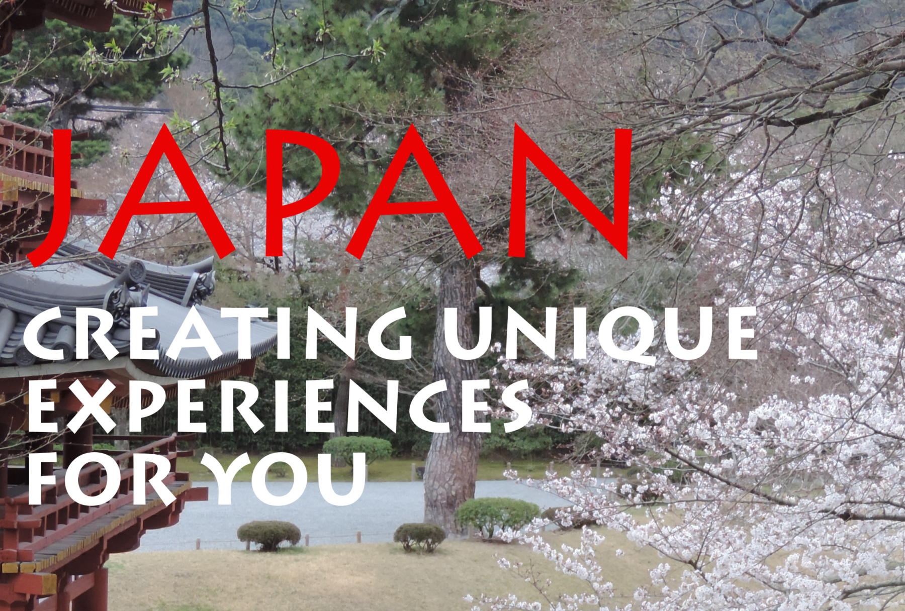 Tour Japan 2019 Choose Your Season And Reserve A Place